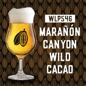 White Labs and Marañón Chocolate Release New Yeast Strain